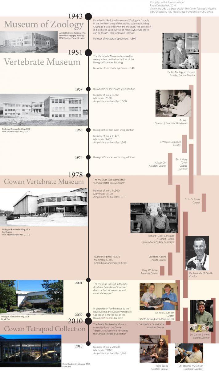 Tetrapod Timeline