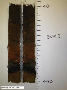soil%20core
