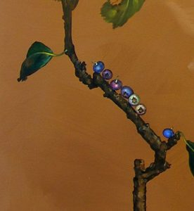 Blueberries_0