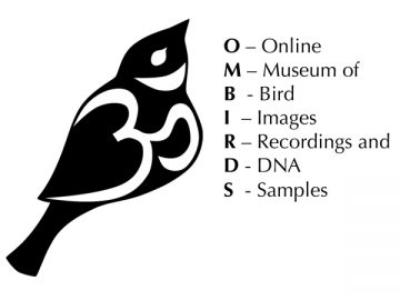 "Derek Tan, the Media Specialist at the Beaty Biodiversity Museum created the fantastic OMBIRDS Logo and contributed the design of the poster. The first syllable ""OM"" is derived from the first syllable of the Sanskrit mantra Om Mani Padme Hum. Om is the symbol for wisdom in some cultures."