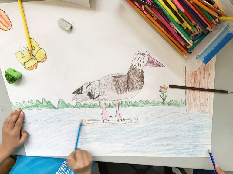a child draws an artwork featuring a duck in a pond