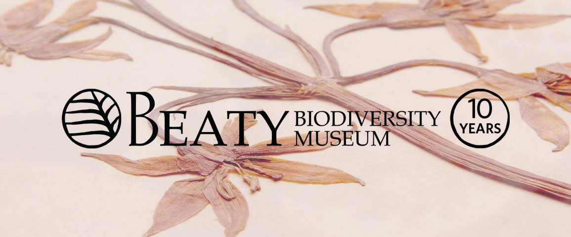 pressed flowers sit behind the tenth anniversary Beaty Museum logo.